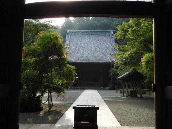 妙本寺二天門から祖師堂をみる 7月