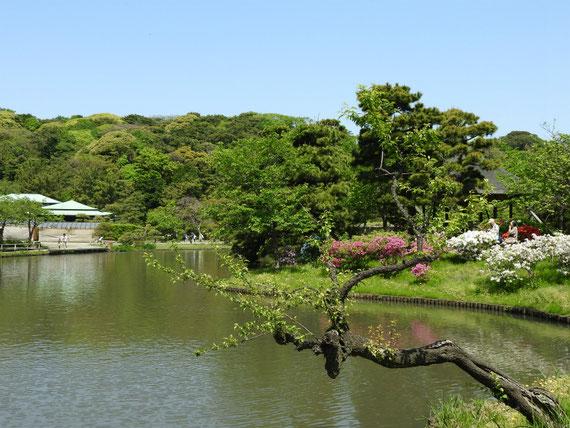 勧心橋から大池を望む