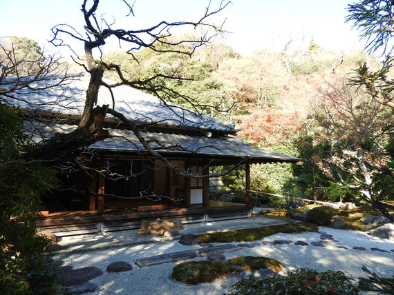 本堂横の茶屋「喜泉庵」古山水庭園