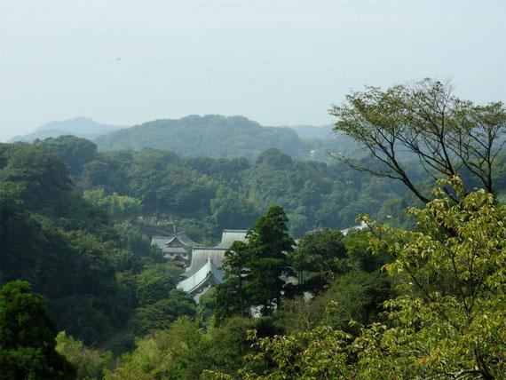 半僧坊展望台から 深い樹木に包まれた建長寺