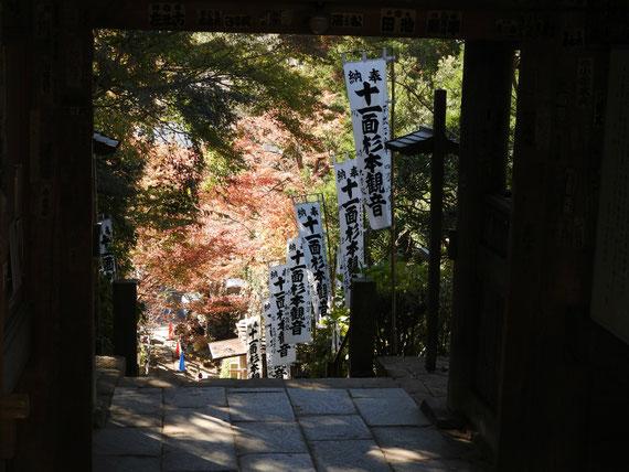 杉本寺仁王門から石段を望む