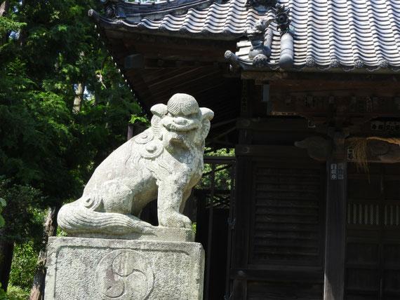 八坂大神狛犬 9月