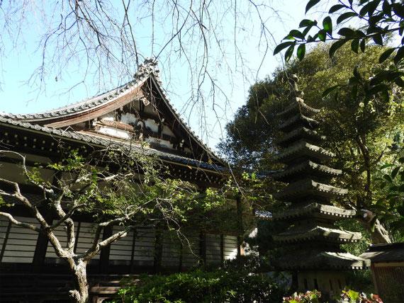 御荼毘所から本堂を望む