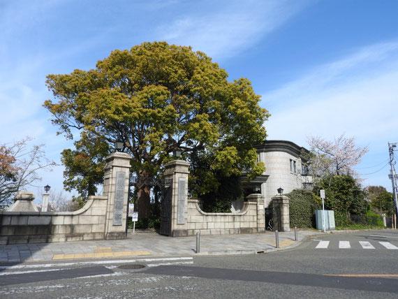 交差点からみる、横浜外国人墓地資料館正門