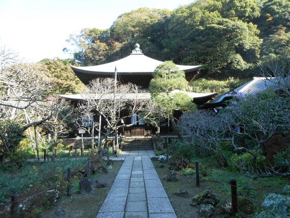 禅宗建築独特の屋根の反りが美しい仏殿。 これから朝日は差し始めた頃です。