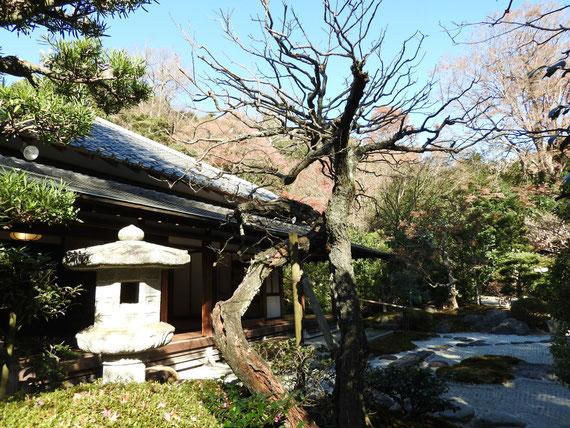 喜撰庵の古山水庭園