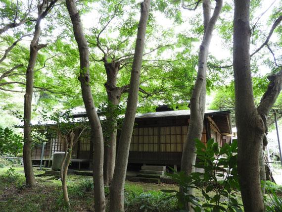 竹林から書院を望む