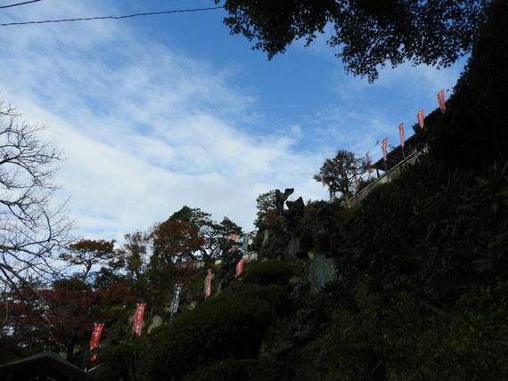 半僧坊頂上の風景