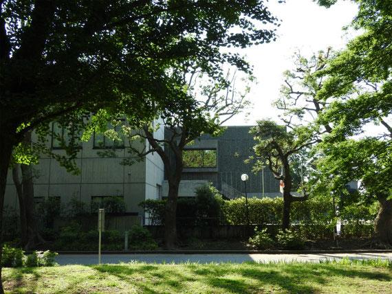 上野公園側から新館と、本館を望む