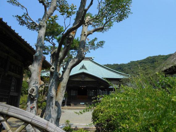 青空を背景に、本堂(龍護殿)。鎌倉の空はいつも青いです。