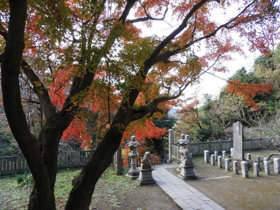 途中の、石灯籠と紅葉