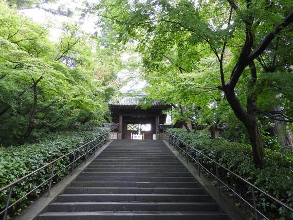円覚寺総門(端鹿山) 9月