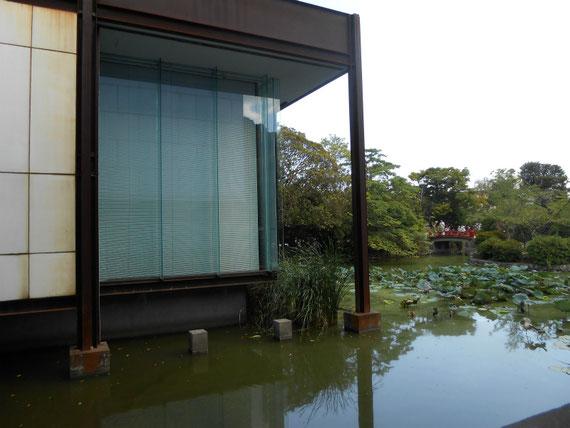 平家池にたたずむ、鉄とガラスの新館棟
