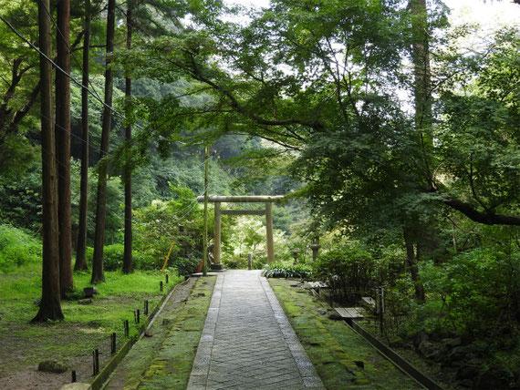 半僧坊からの下りの参道