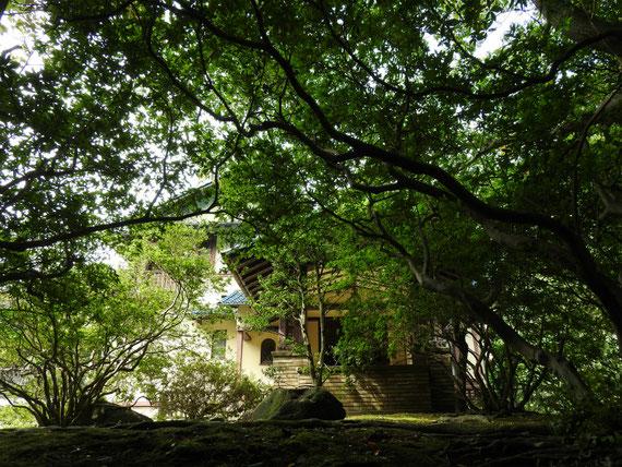 敷地内の小道から鎌倉文学館の玄関を観る