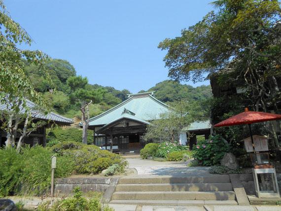 海蔵寺境内から本堂をみる