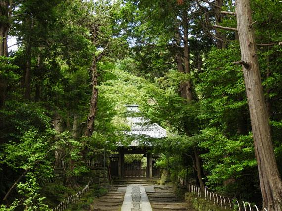 壽福寺 参道と中門