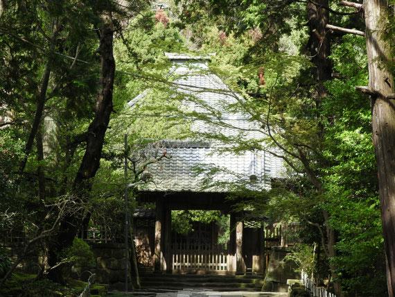 壽福金剛禅寺中門と本堂 4月