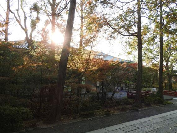 朝日の鎌倉国宝館