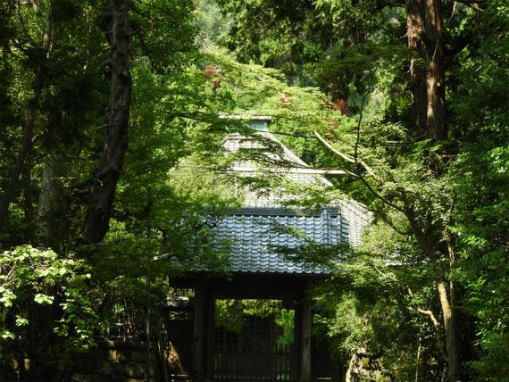 壽福寺本堂への中門、ここまでしか入れません