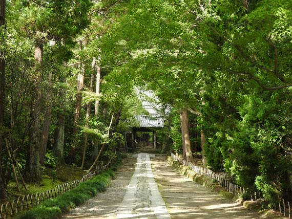 中門への参道