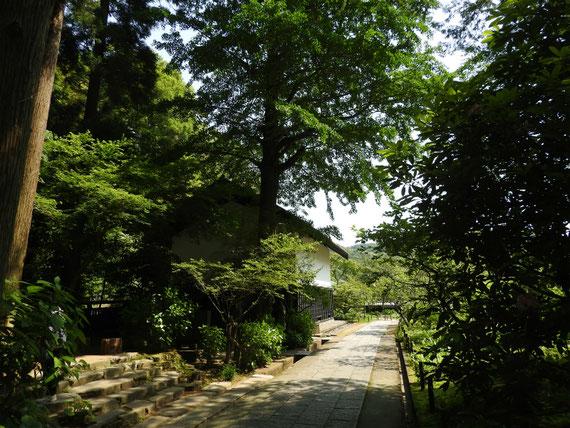 墓苑から松ヶ岡宝蔵をみる