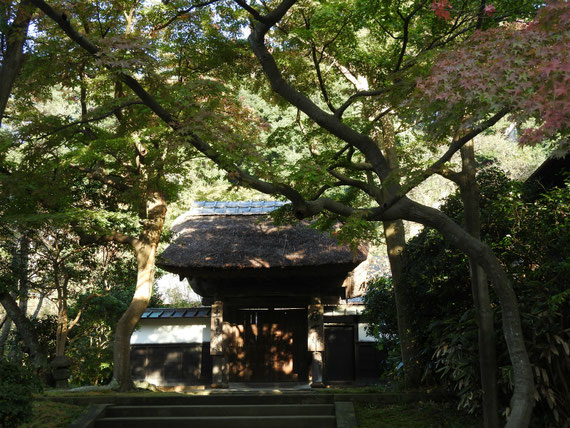 円覚寺居士林 11月
