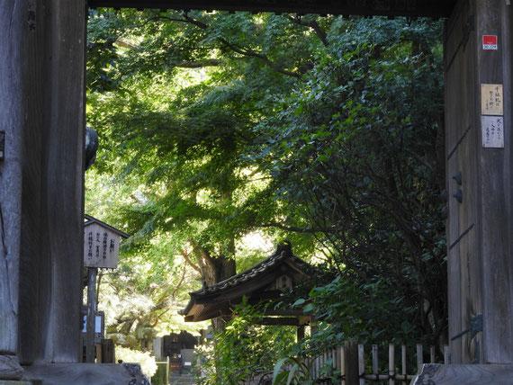 安国論寺山門から境内をみる 10月