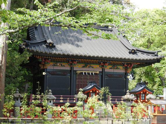 静岡少彦名神社 5月