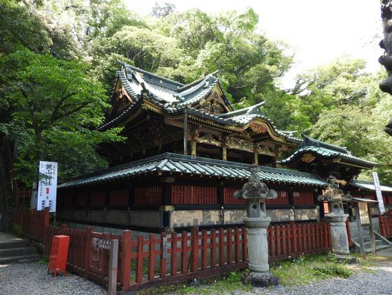 静岡八千戈神社 5月