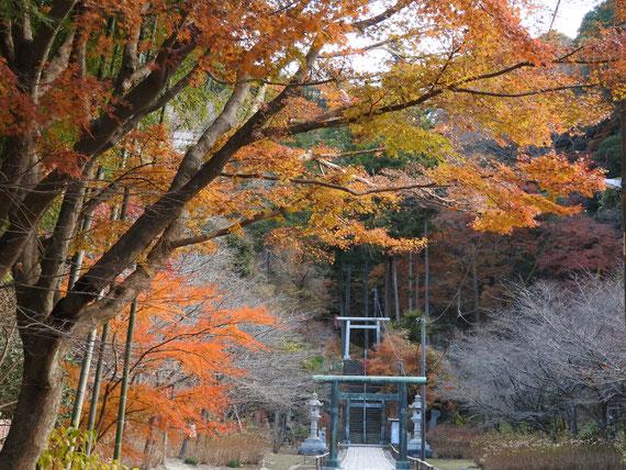 建長寺半僧坊への道