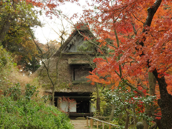 三溪園矢箆原家住宅 12月