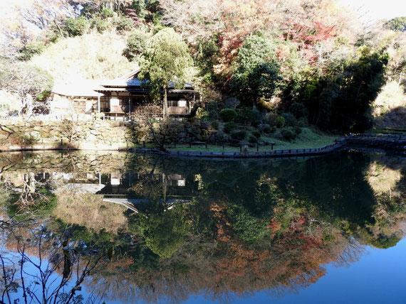 大覚池に映る回春院