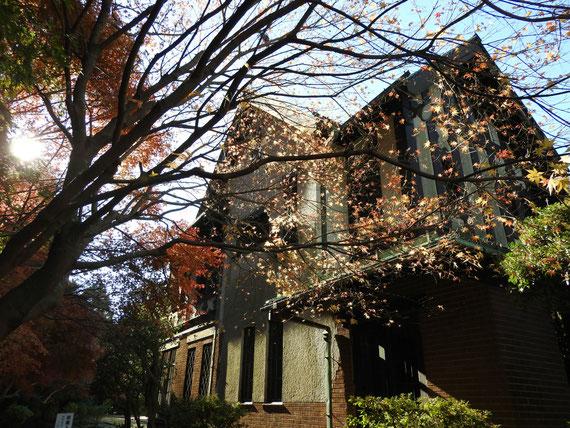 左庭園から紅葉の旧華頂宮邸
