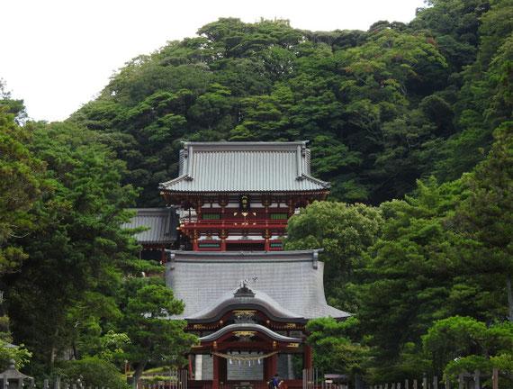 真夏の鶴岡八幡宮