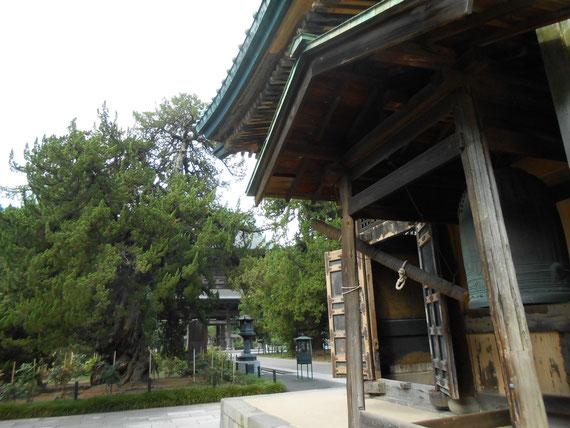 建長寺 仏殿 釣鐘