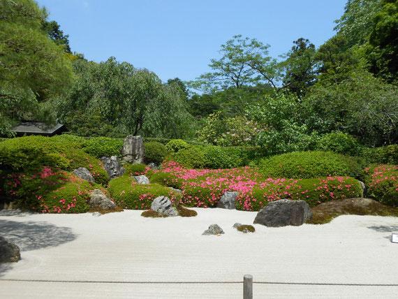 本堂側からの古山水庭園。須弥山をかたどった仏教感を表現しています。