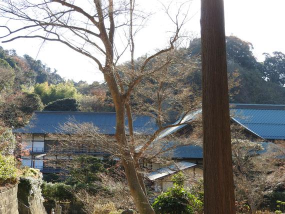 龍峰院から観る方丈と得月楼