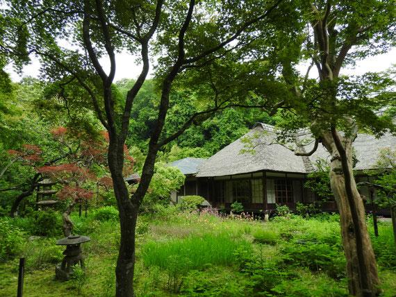 屋や葺き屋根の、書院・客殿と中庭