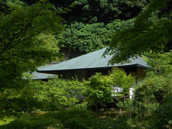 円覚寺 正伝庵。 これが日本のお寺だよね。