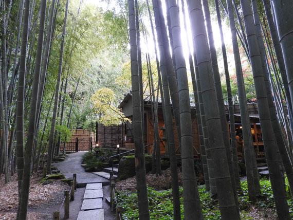 竹の庭の中の、茶屋 休耕庵