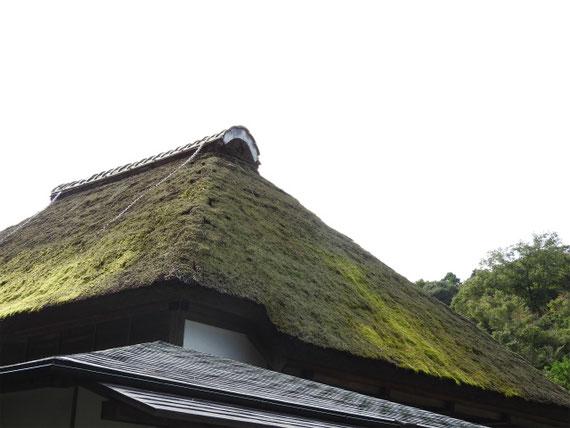 庫裡の茅葺き屋根