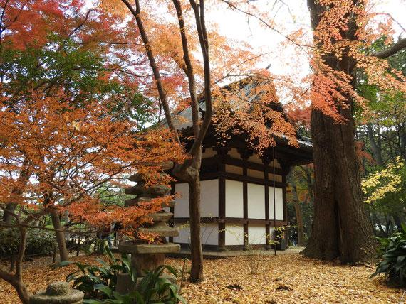 左から観る旧天瑞寺寿塔覇堂