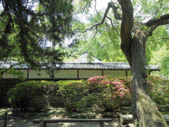 和の草花に彩られた中庭