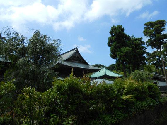 境内から見る6月の青空の建長寺