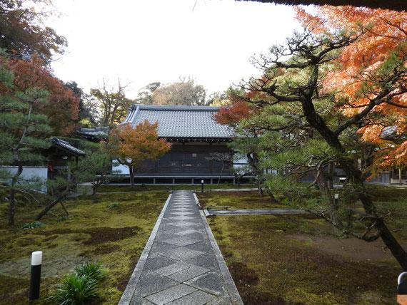 山門からみる、長寿禅寺本堂
