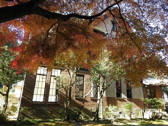紅葉の旧華頂宮邸、左庭園から