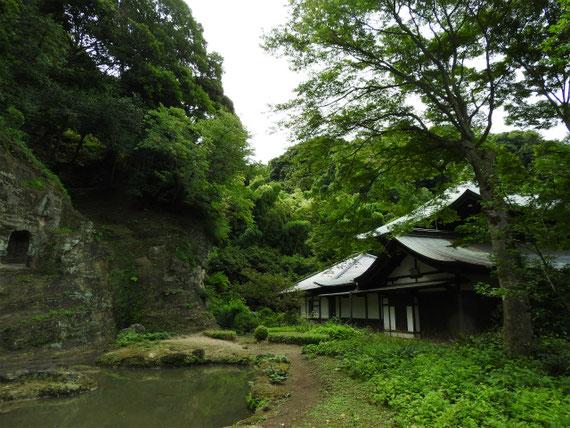 本堂裏の名勝瑞泉寺庭園