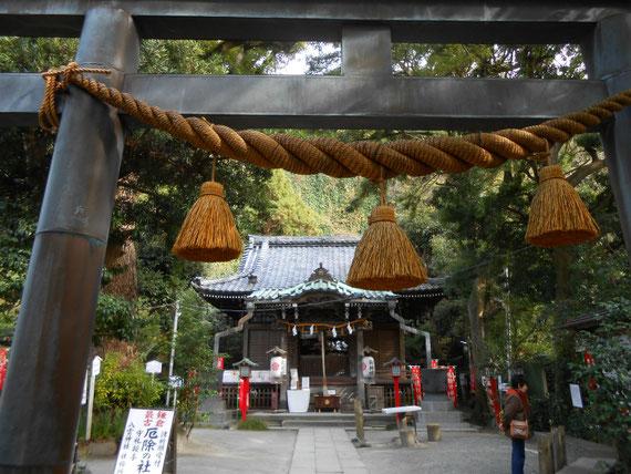 鳥居から八雲神社本堂をみる