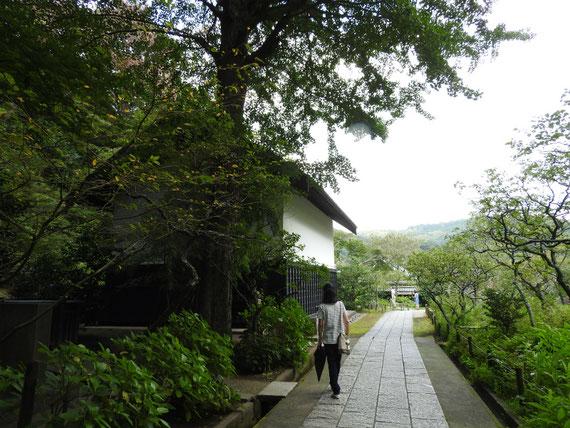 墓苑から松ヶ岡宝蔵への参道